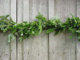 25 Ft Fraser Fir Garland - 14th Street Garden Center