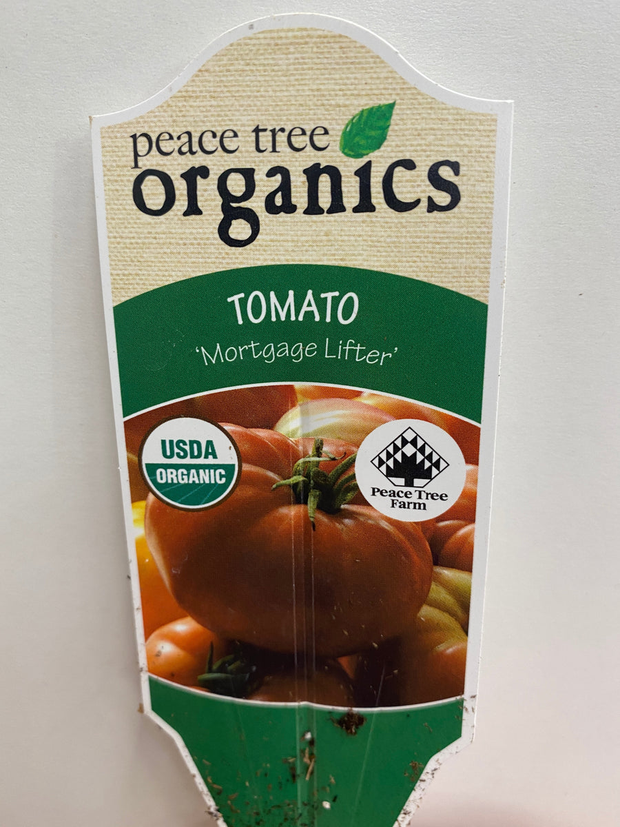TOMATO MORTGAGE LIFTER ORGANIC VEGETABLES 1 QT