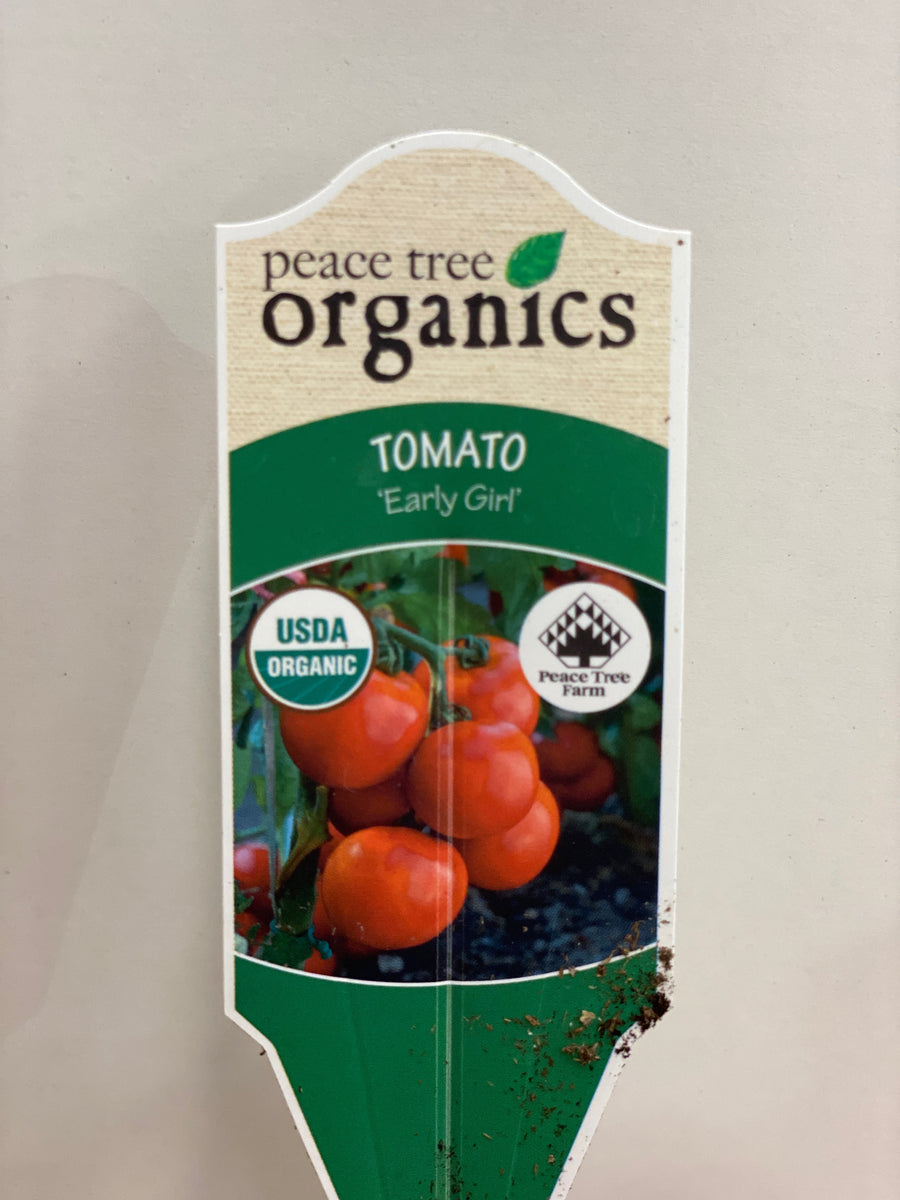 TOMATO EARLY GIRL ORGANIC VEGETABLES 1 QT