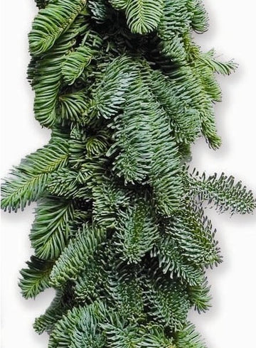25 FT NOBLE FIR GARLAND