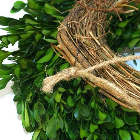 12 inch Boxwood Wreath - 14th Street Garden Center - 2