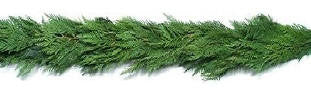 25 Ft Western Cedar Garland - 14th Street Garden Center - 1