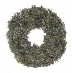 12 inch Juniper Wreath - 14th Street Garden Center