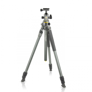 Vanguard Alta Pro 2+ 263AB100 Tripod with BH-100 Ball Head
