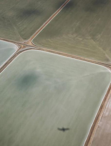 An aerial photograph of land down below from an aeroplane showing green fields.