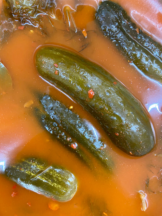 Hot Pickles - Another Mother Fermentorium