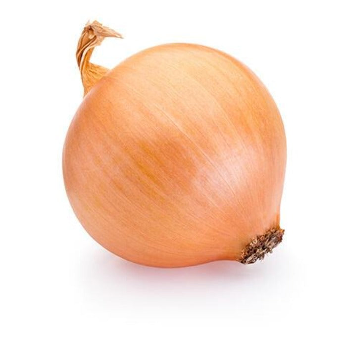 Colossal Onion 洋葱 (約2lb)