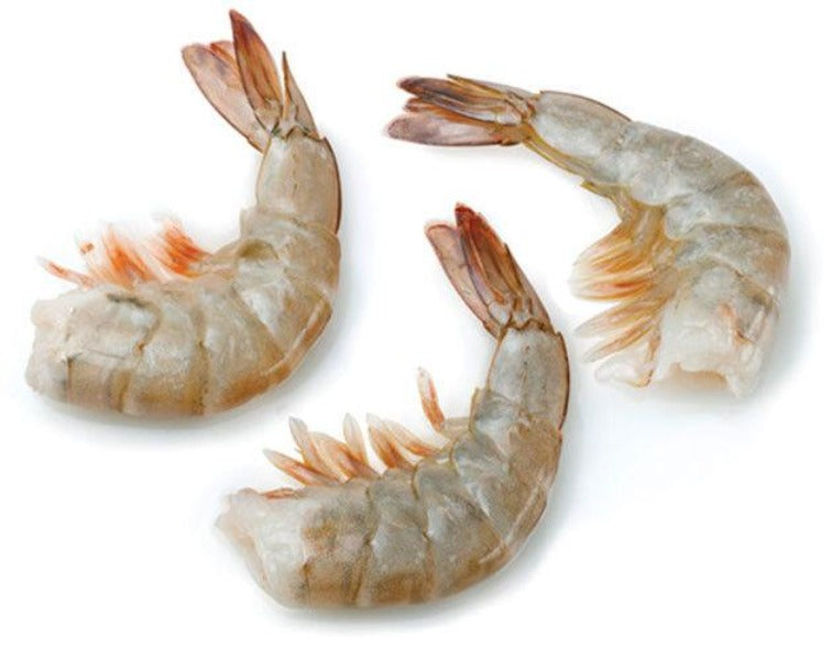 Thai White Shrimp 泰国白虾