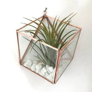 Square Wall Mounted Planter