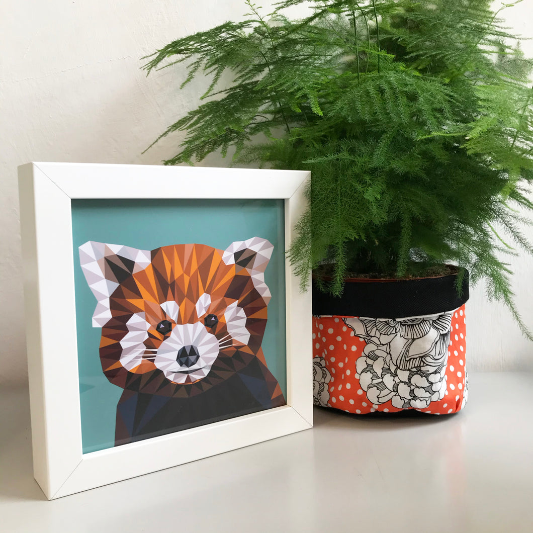 Mini Framed Red Panda