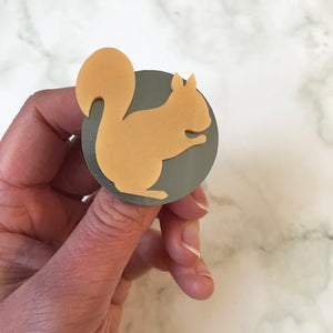 Acrylic Squirrel Brooch