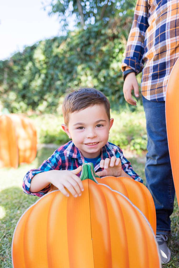 Fall Party Pumpkin Slotted Prop