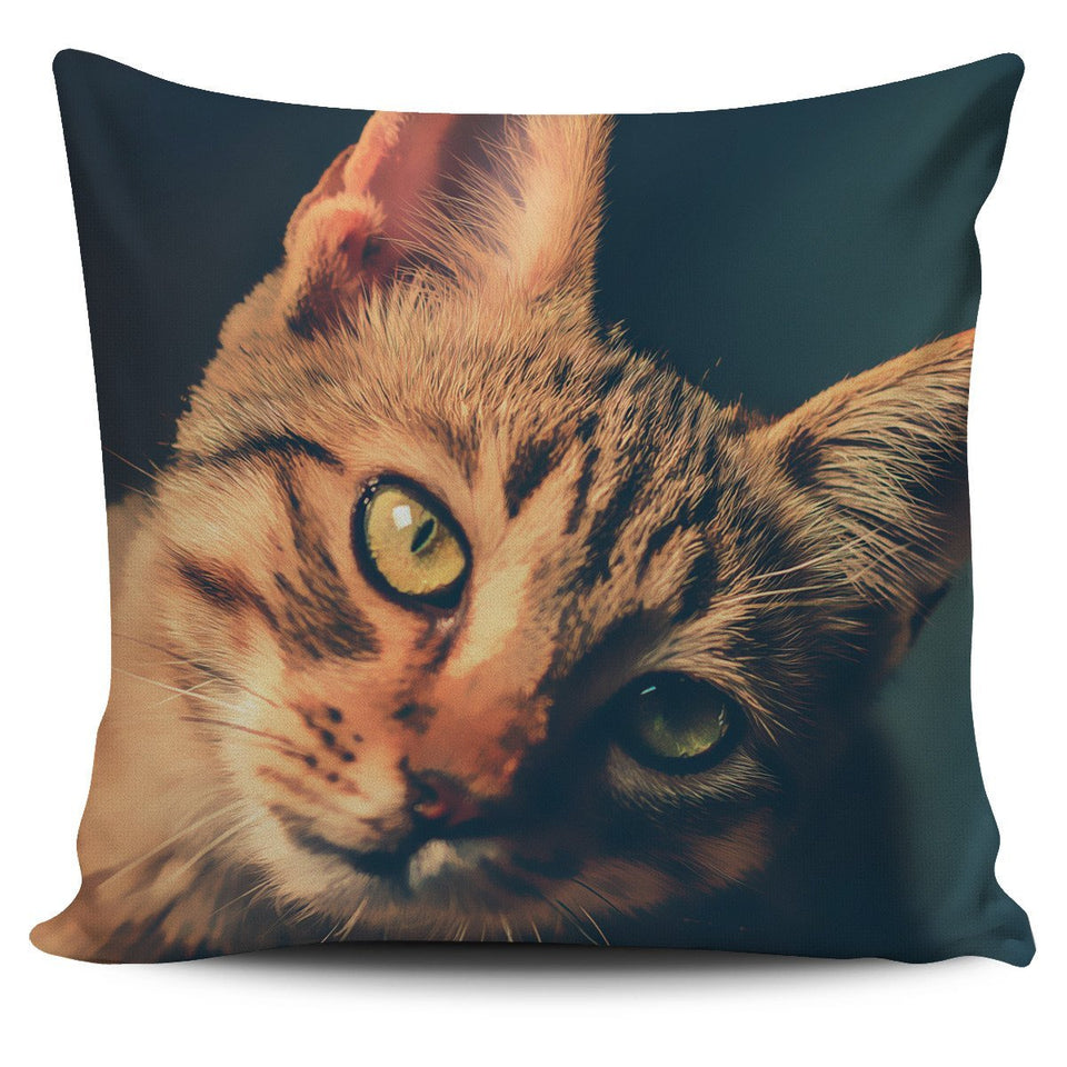 Pillow Cover Ginger Cat Painted - Abby's Alley