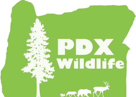 PDX Wildlife, Awesome Panda Charity.