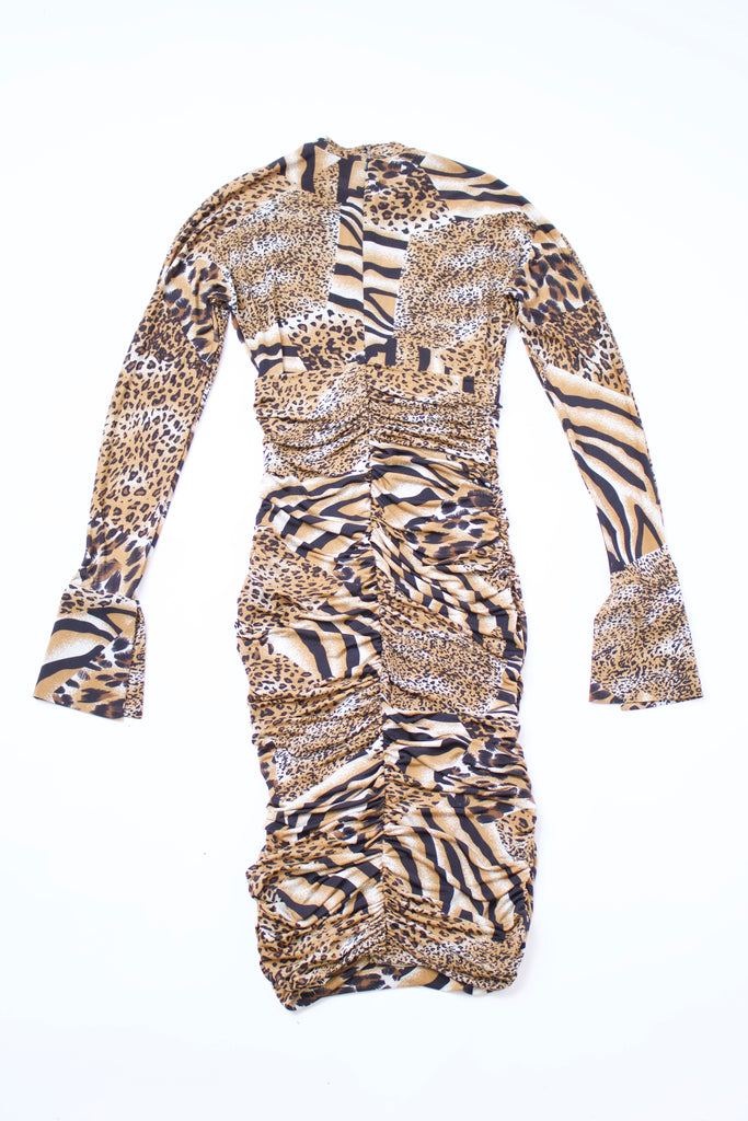 Animal Print Ruched Bodycon Dress