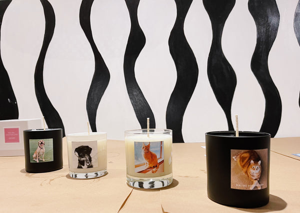 Personalized candles made at Malibu Apothecary custom candle pouring party in Bishop Arts District of Dallas, Texas