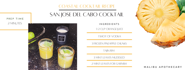 SAN JOSE DEL CABO inspired cocktail recipe guide with froze pineapple chunks, orange juice, vodka