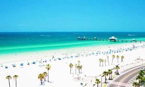 Panoramic view of Clearwater, Florida beach with palm trees, lines of beach chairs, and bright blue water