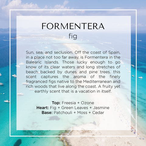 Formentera fig scented candle has notes of fig, green leaves, freesia, moss, cedar