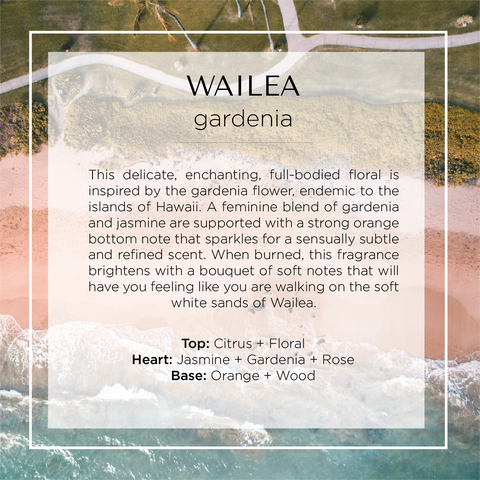 Our Wailea Candle with notes of Floral, Citrus, Jasmine, Gardenia, Rose, Orange and Wood.
