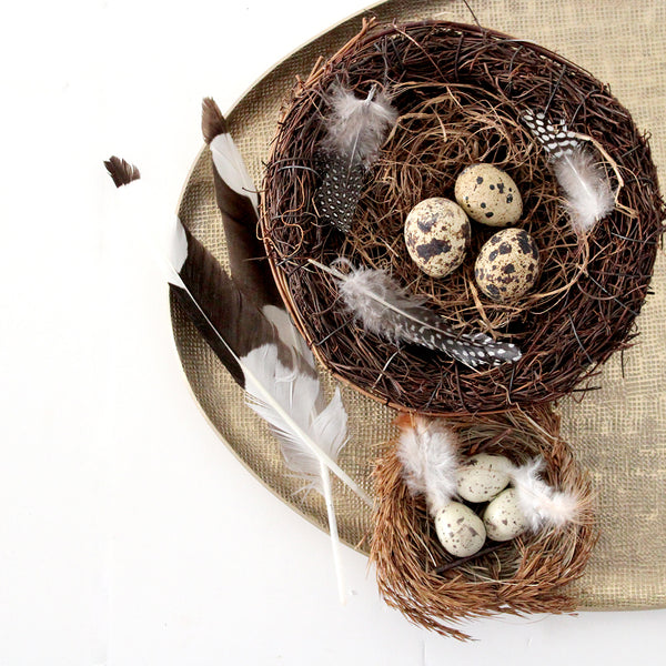 Bring a touch of nature inside with these sweet little handmade birds nests, complete with real feather and eggs. Two sizes available.  Size: Small - D10cm Large - D16cm