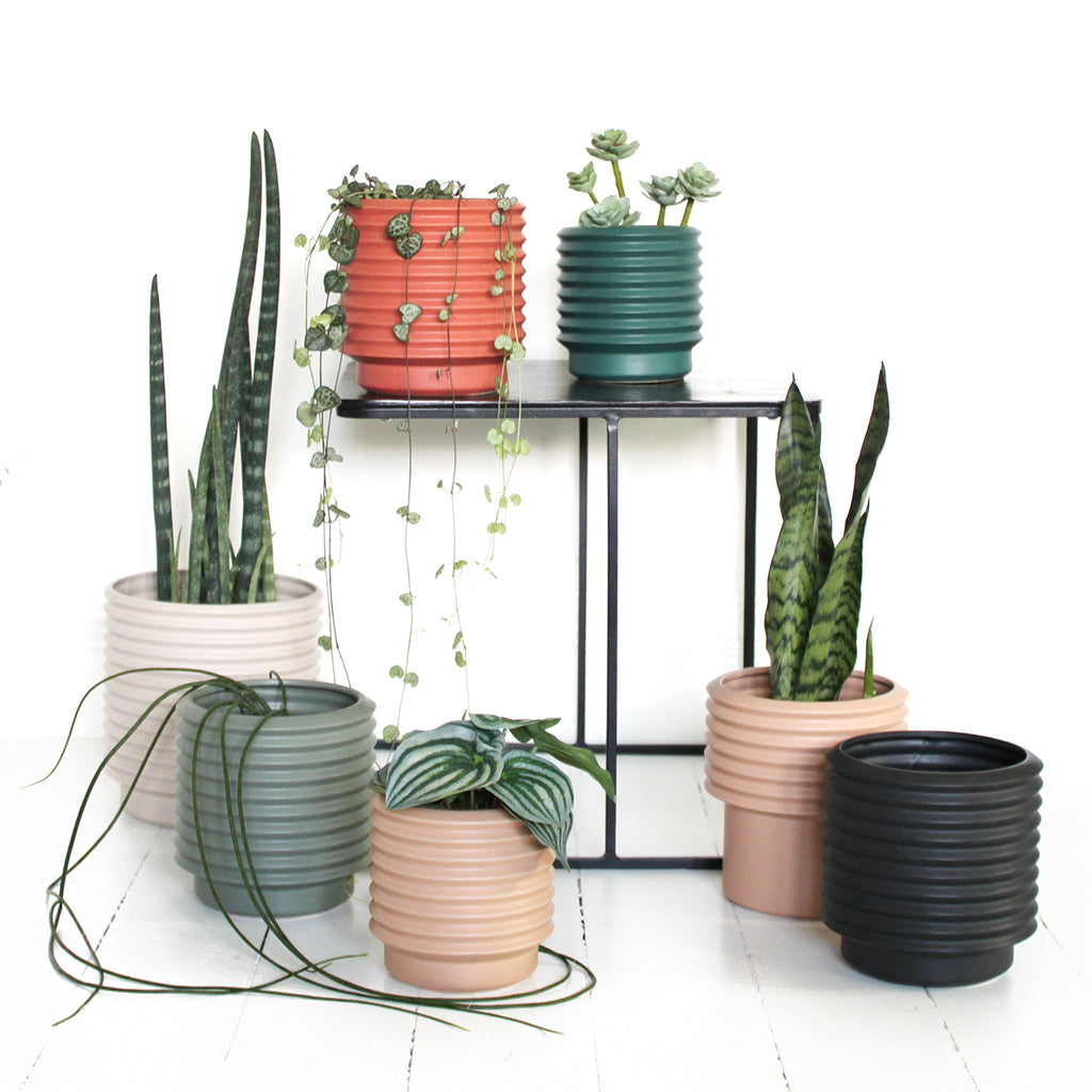 The Berlin self watering planters are a classic combination of form and function. These beautiful modern form stoneware planters include an internal drainage saucer so you can plant directly into the pot. Available in a combination or colours and sizes.