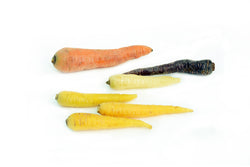 Baby Coloured Carrots