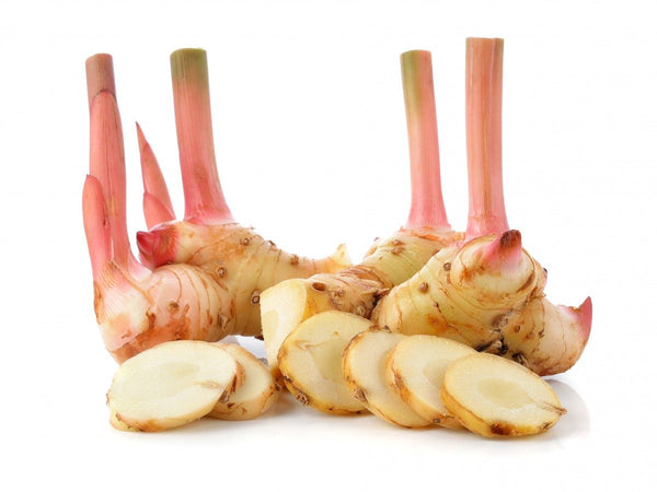 Galangal / Thai Ginger