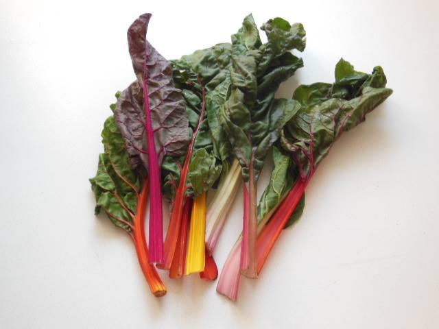 Swiss Chard colourful