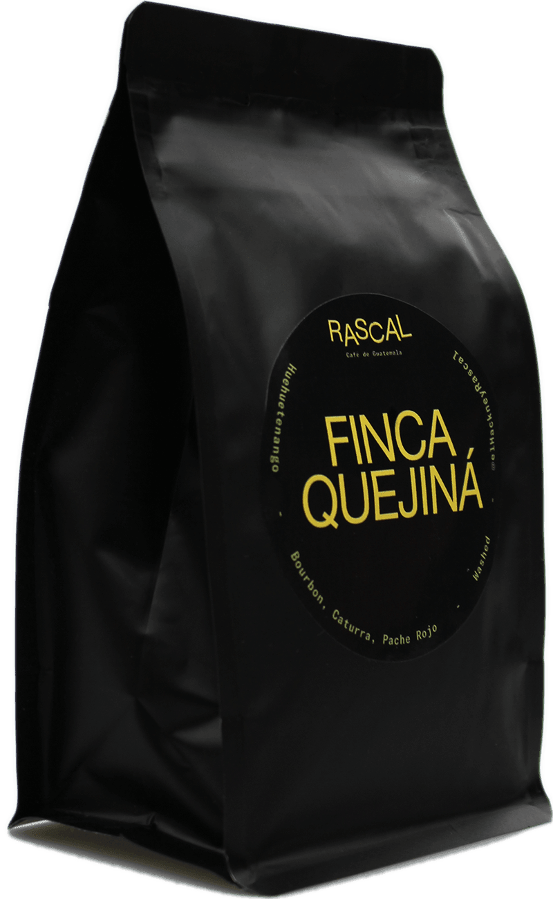 Finca Quejiná Bourbon, Caturra, Pache Rojo Washed - 250g Whole Bean