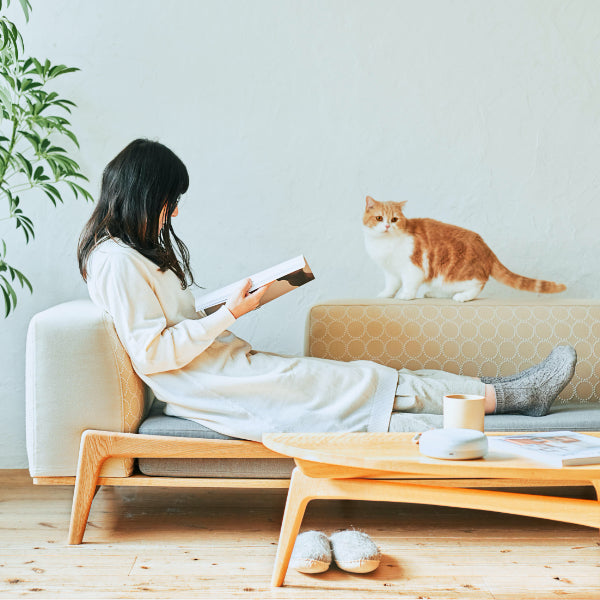 Luu Sofa cat life model【minä perhonen】