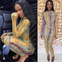 Load image into Gallery viewer, Snake Skin Print Long Sleeve Mesh High Neck Sexy  Jumpsuit