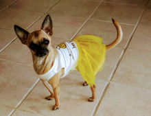 Load image into Gallery viewer, bee happy Dog T-shirt Dress
