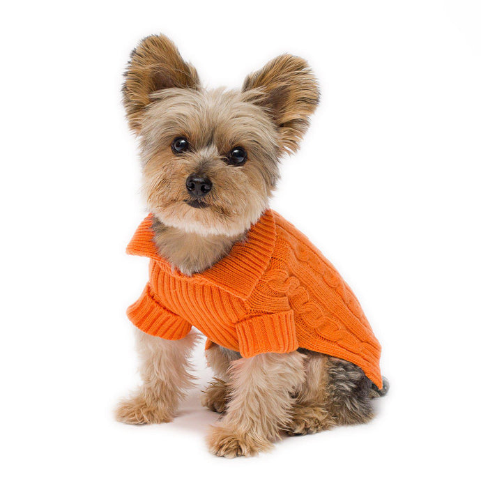 Tangerine Aran Dog Sweater