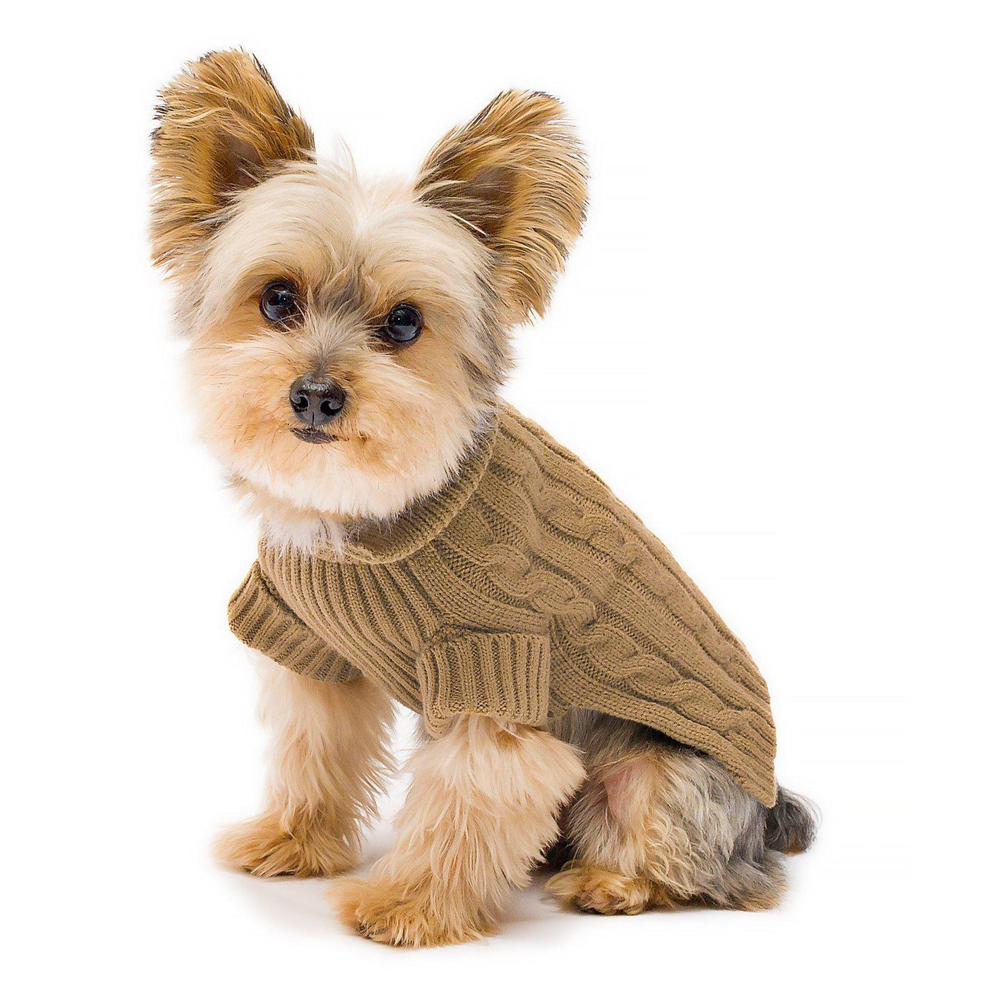 Camel Aran Dog Sweater