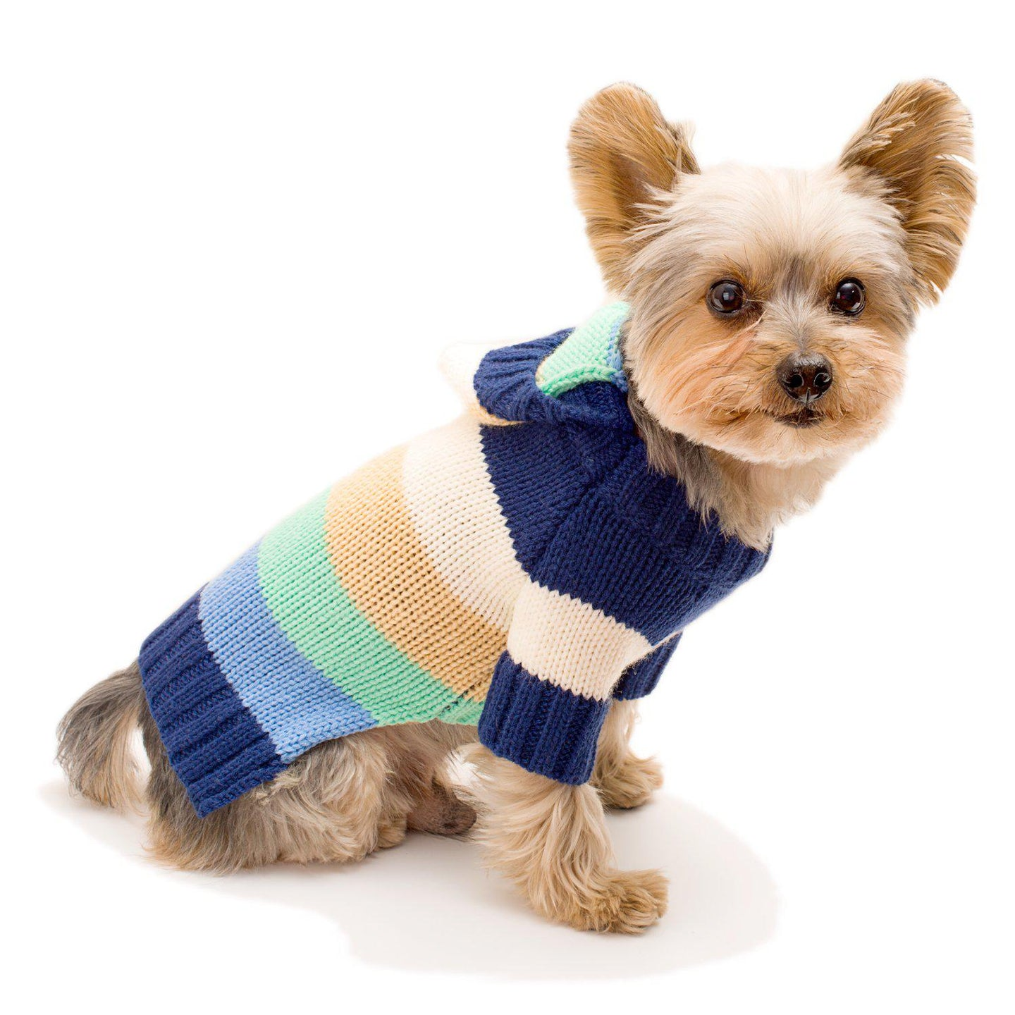 Happy Blue Stripes Hoodie Dog Sweater
