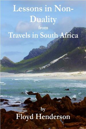 Lessons in Non-Duality from Travels in South Africa