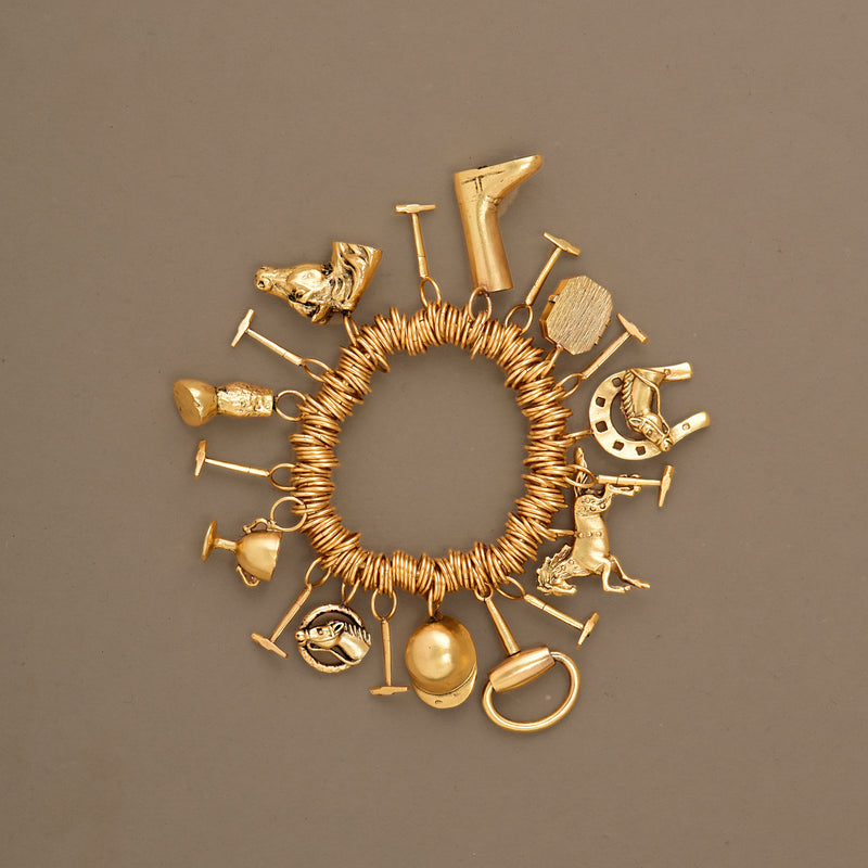 ALL-IN-ONE CHARM BRACELET