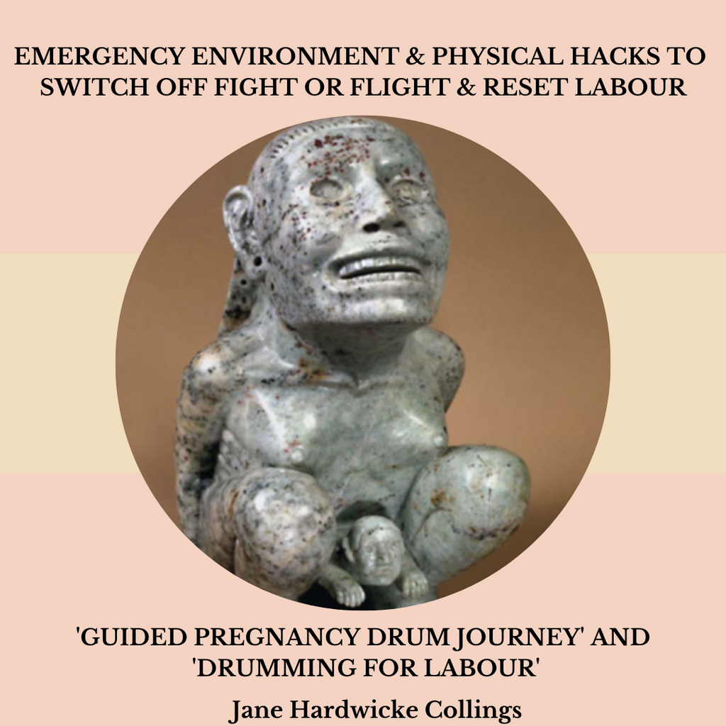 Labour Hacks PDF & Guided Drum Journey + Drumming for Labour AUDIO