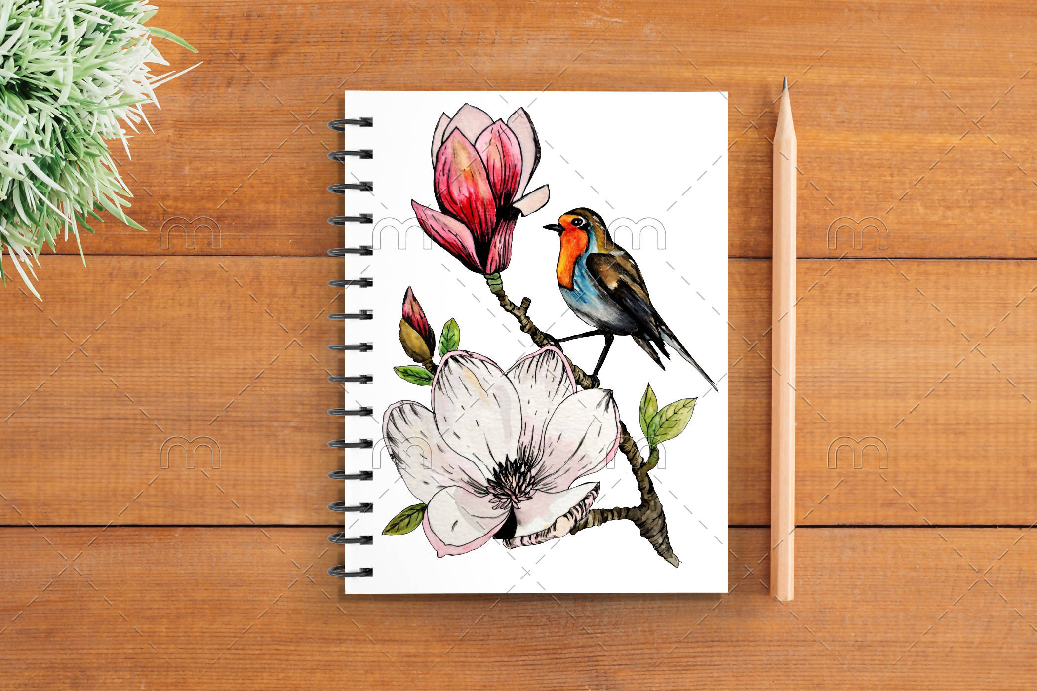 Little Birdie Notebook