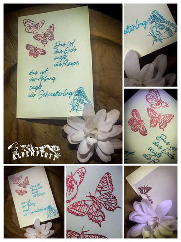 Butterfly Letter and Card
