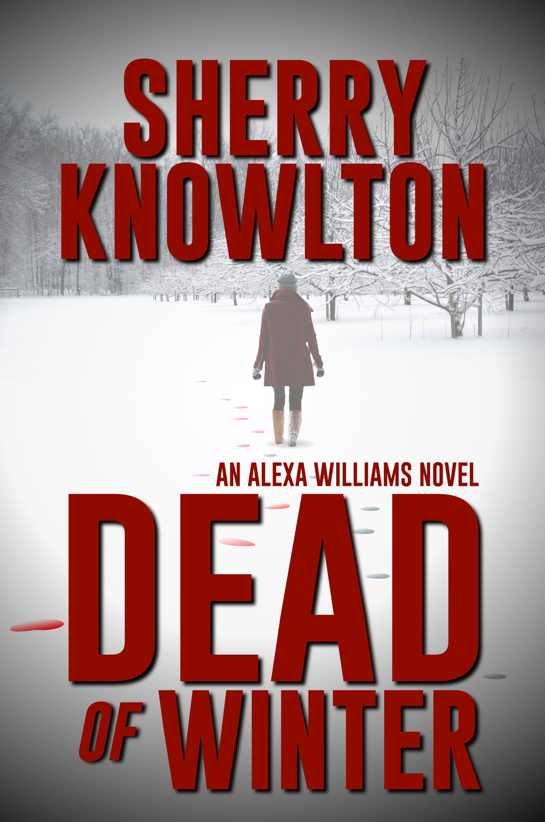 "Sherry Knowlton's ""Dead of Winter"" tops Milford House Press bestsellers for February"