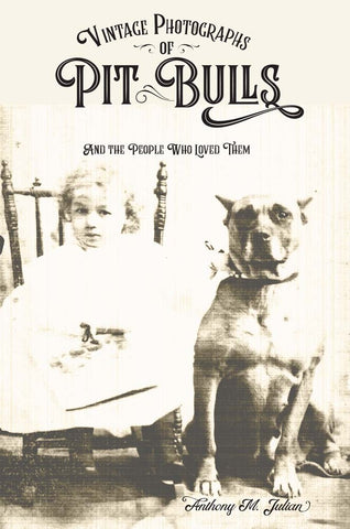Vintage Photographs of Pit Bulls