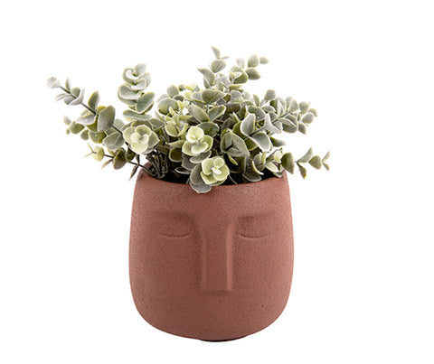 Plant Pot Face Cement Clay Brown