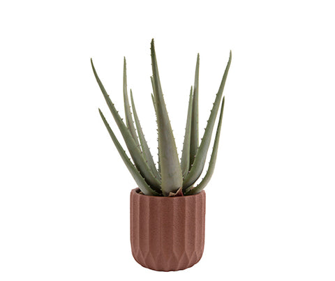 Plant Pot Stripes Cement Small Clay Brown