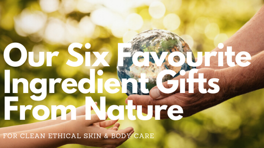 Our Six Favourite Ingredient Gifts from Nature