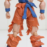 Dragon Ball Z Goku Super Saiyan Warrior Awakening Version Action Figure - DBZ Saiyan