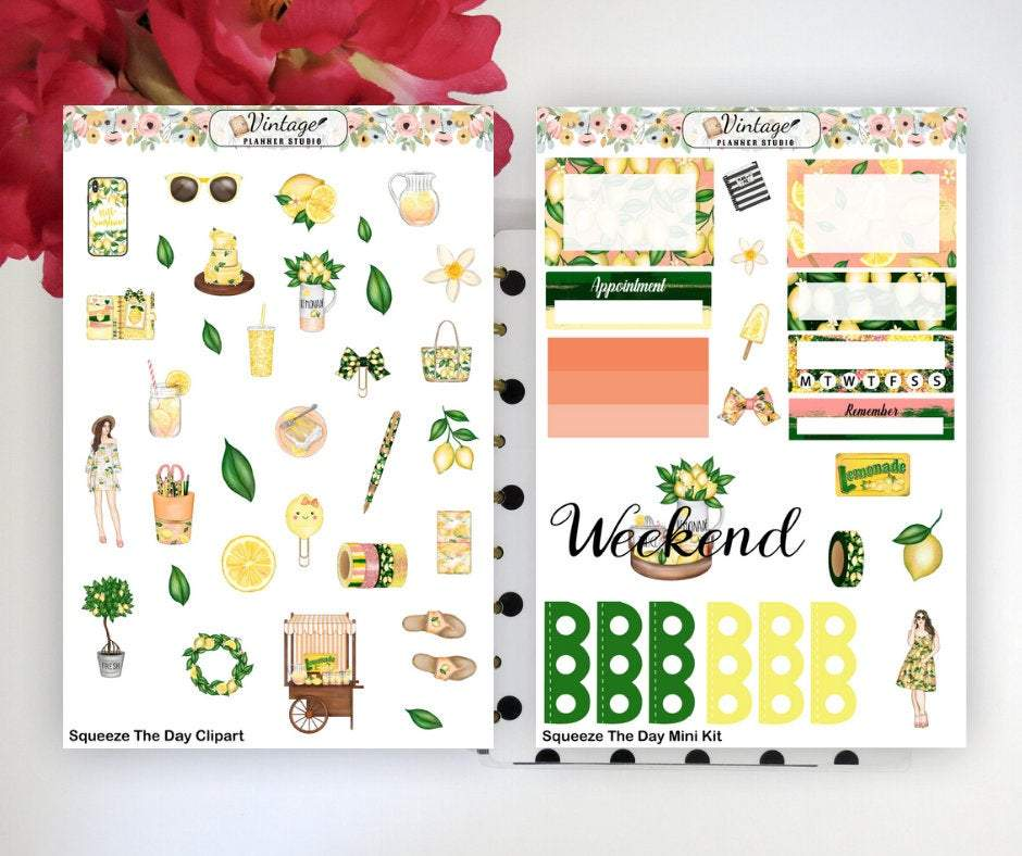 Squeeze The Day Mini Kit | Planner Stickers - Vintage Planner Studio
