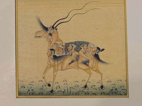 Mughal Miniature painting of an Antelope - erotic