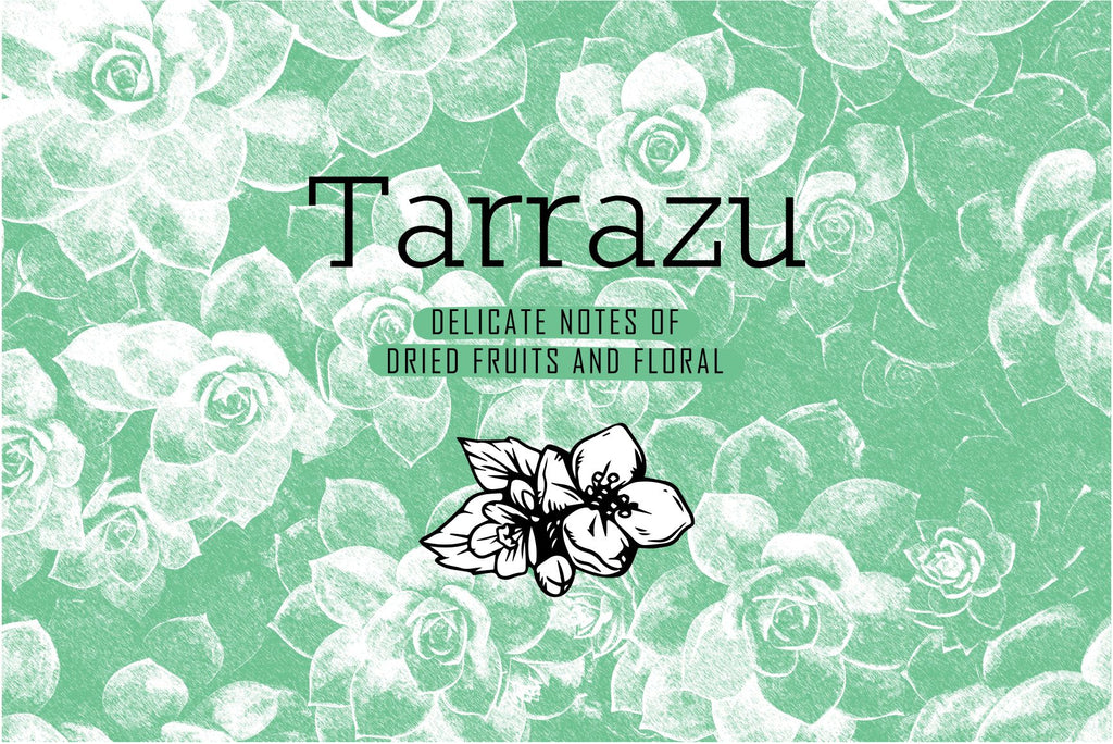Tarrazu - Mighty Bean Coffee
